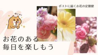 ポストに届くお花の定期便